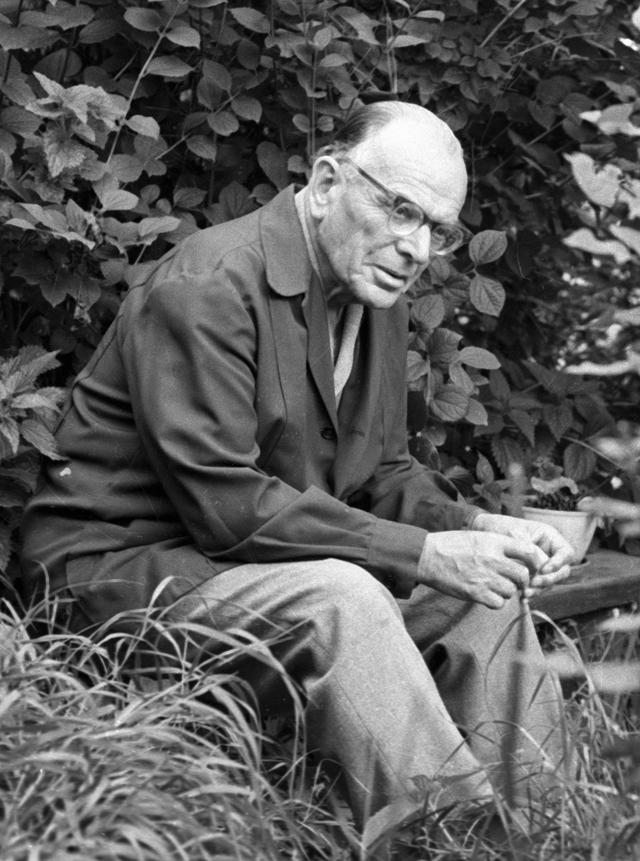Константин Паустовский.