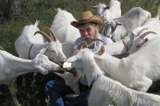 На онлайн-площадке можно купить продукцию от известного татарстанского фермера Мурата Сиразина.