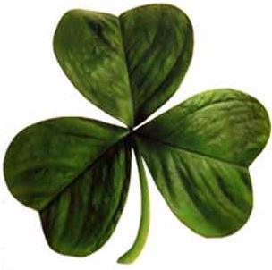 Ирландский трилистник стал первым символом карельского движения