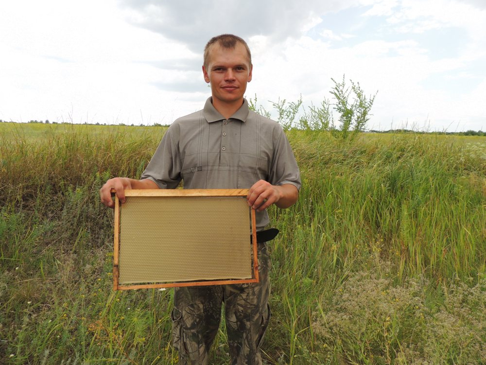 Пчеловод Дмитрий Полеев показывает пчелиную рамку