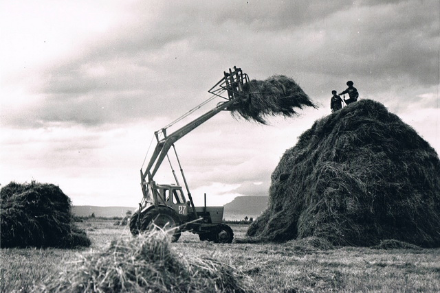 Заготовка кормов в 70-е годы.