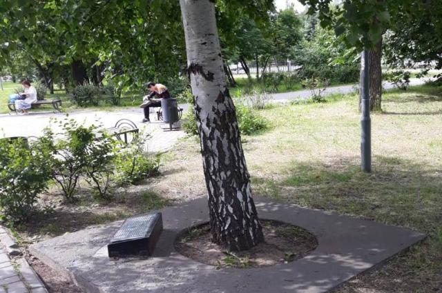 Необычный – так называемый живой – памятник Нигмату Ибрагимову.