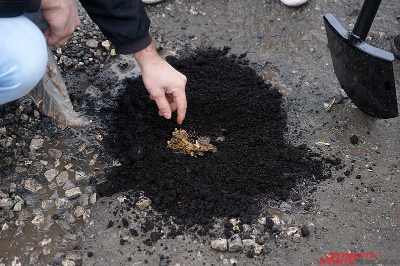Пермяки рассыпали грунт, зарыли корнеплоды.