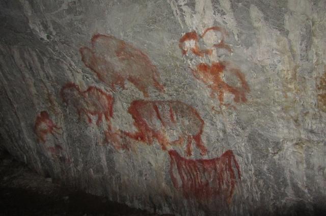 Копии рисунков древнего человека в Каповой пещере.