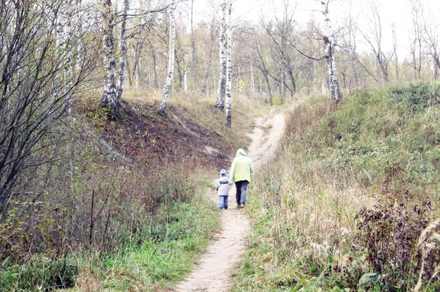 Чтобы добраться от остановки до дома, жителям деревни Светлый Луч приходится идти или по обочине дороги без фонарей, либо через лес.