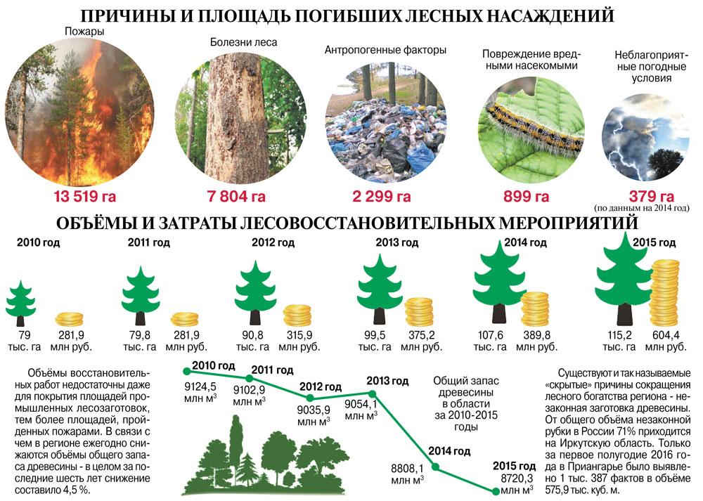 Площадь погибших лесных насаждений