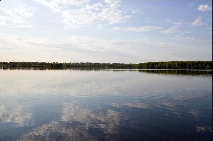 До конца года в водоёмы области будет выпущено более 400 тысяч мальков.