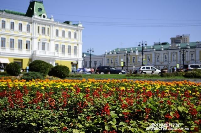 В Омске в июне высадили 77 тысяч цветов.