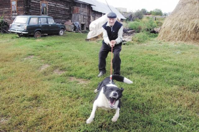 Вывел на улицу собаку без намордника - получи штраф.