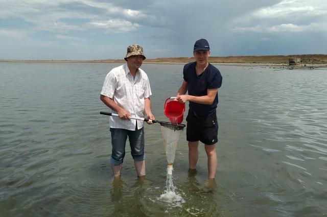 Руководитель ИКВС Андрей Плотников и научный сотрудник Владимир Катаев фильтруют образцы воды из озера Сиваш (Крым) для исследований планктона.