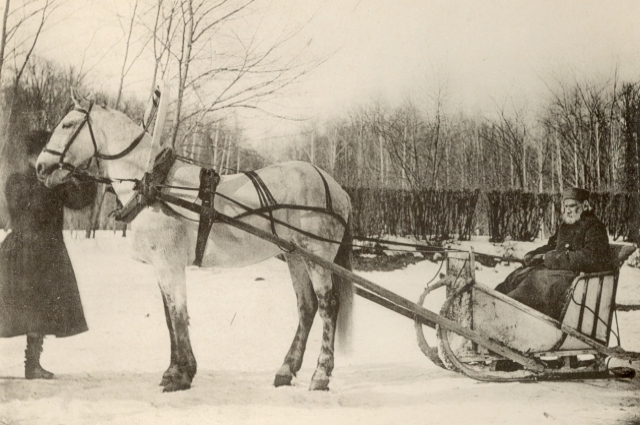 Толстая С.А.1912 г.«На прогулку в санях»