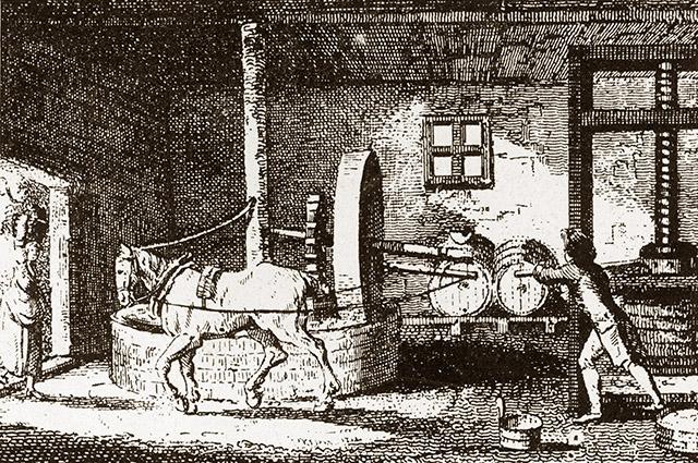 Традиционные конные круговые яблокодробилки применяют сегодня очень редко, в основном их используют как цветочные горшки или архитектурные элементы украшения сада