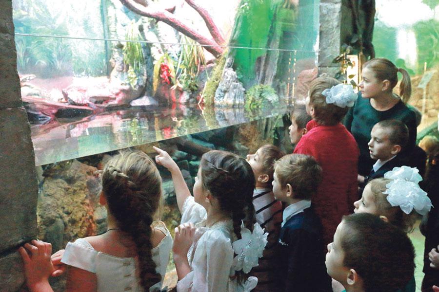 Мальчишкам и девчонкам очень понравилось в океанариуме.