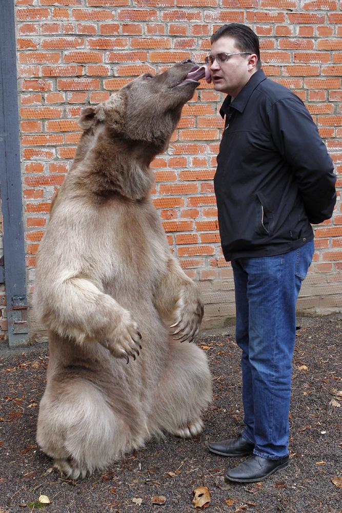 Медведь Степа и его воспитатель Юрий Пантелеенко.