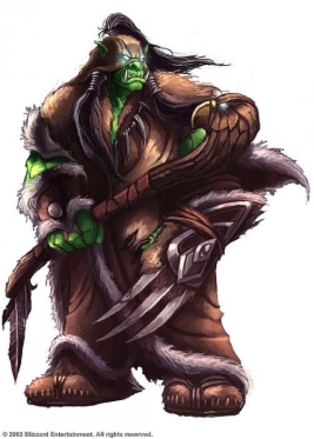 Орки — вымышленная раса. До третьей игры орки были представлены как кровожадные дикари, уничтожающие всё на своём пути, но оказалось, что орки на самом деле были под контролем демонов