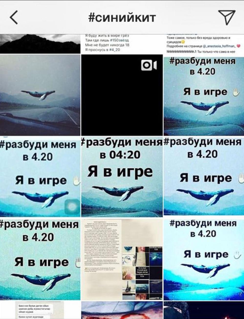 «Группы смерти» постепенно перекочевывают в другую соцсеть - Instagram