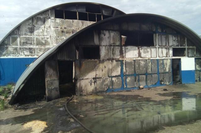 Пожар охватил 300 квадратных метров фермы