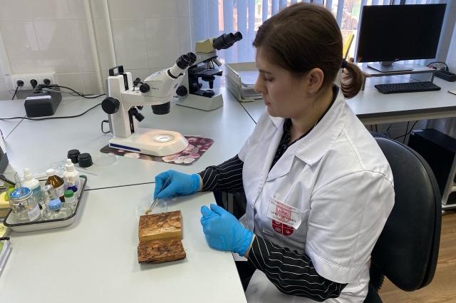 Каждый образец из партии древесины обязательно проходит энтомологические исследования и гельминтологические.