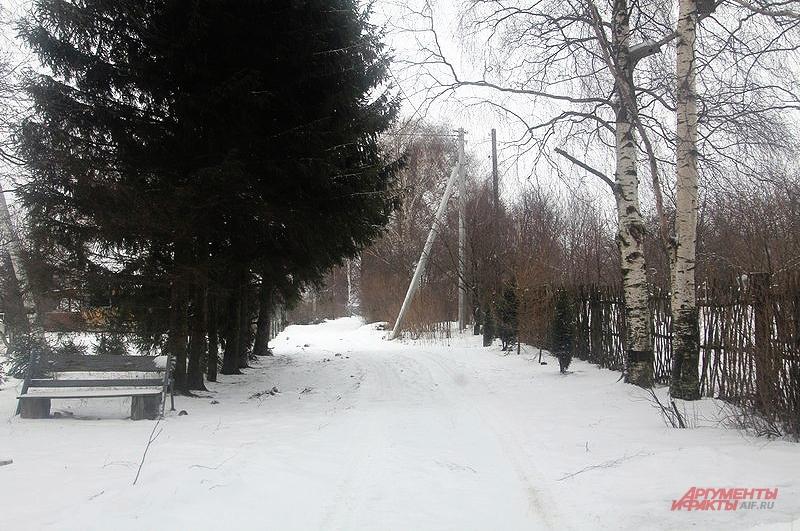 Постоянно в деревне Фарисеево проживают в основном пенсионеры. Властям на нас наплевать, они оставили нас доживать свой век в таких условиях, считают жители