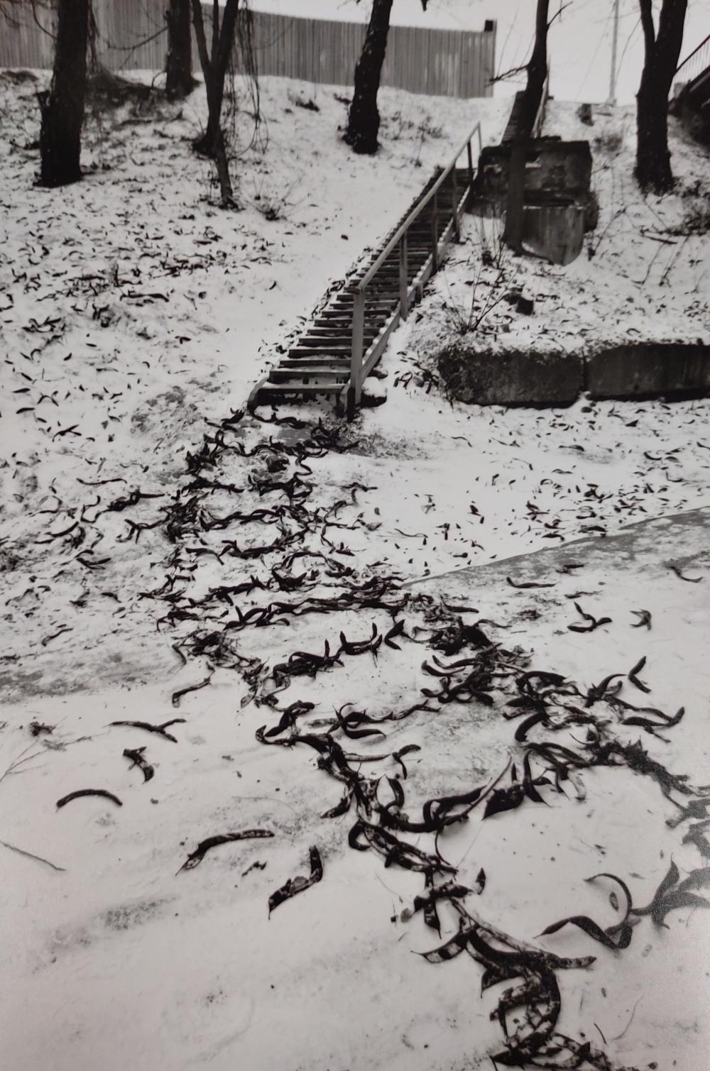 На улицах-холстах Юрий Фесенко рисовал подручными материалами.