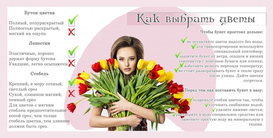 Инфографика «Как выбрать живые цветы».