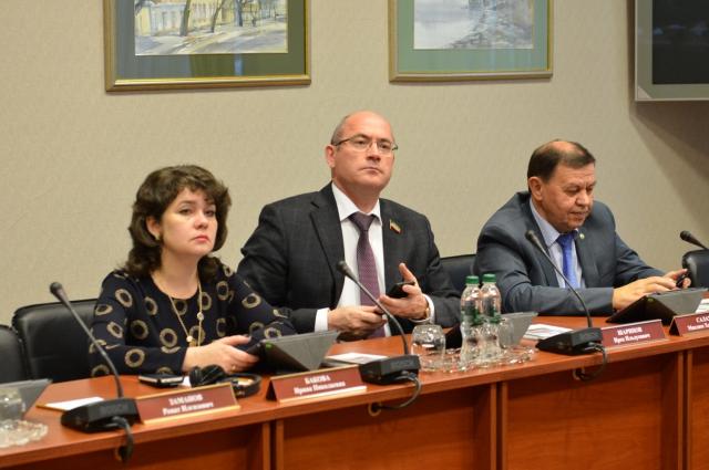 Ирина Бакова: «Концепцию в таком виде принимать нельзя»