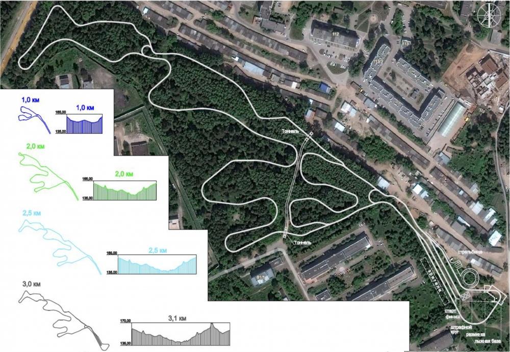 Лыже-роллерную трассу в Стрижах планируют проложить по живописному зеленому ландшафту