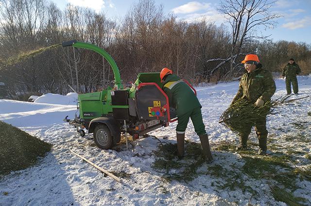 Отслужившие новогодние ёлки тоже можно утилизировать с пользой для природы.