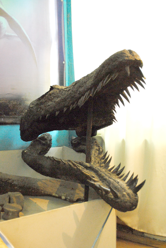 Плиозавр - гроза юрских морей.