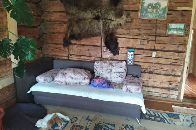 Сейчас семейное гнездо Гаргалык в Юго-Камском не узнать. Под обоями и газетами обнаружился добротный сруб из лиственницы.