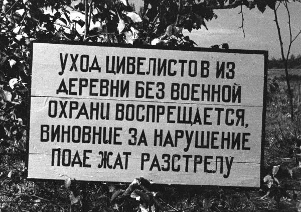 Фашисты и их приспешники расстреливали не только солдат, партизан, но и любого, кто хоть чем-то провинился. А часто просто так..