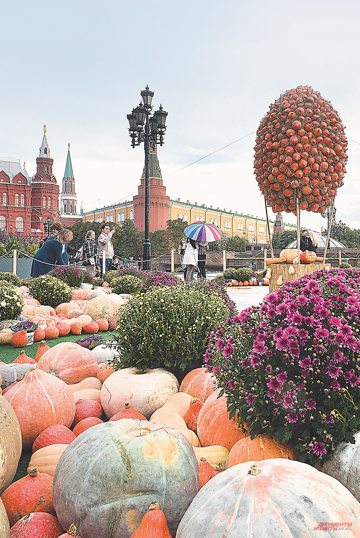 Украшение «Золотой осени» - тыквенный фестиваль.