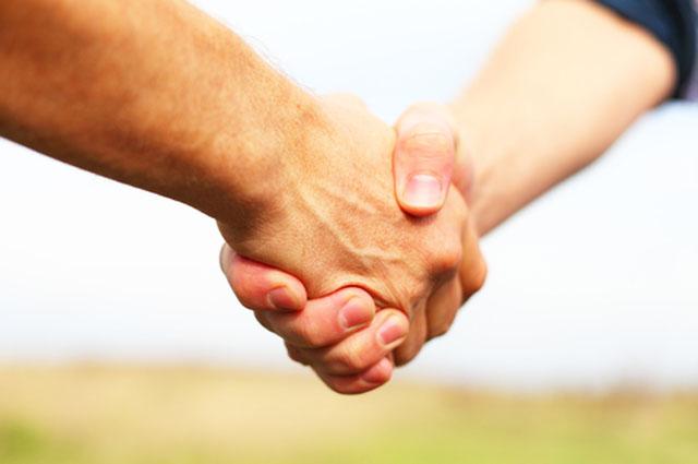 Встреча, рукопожатие