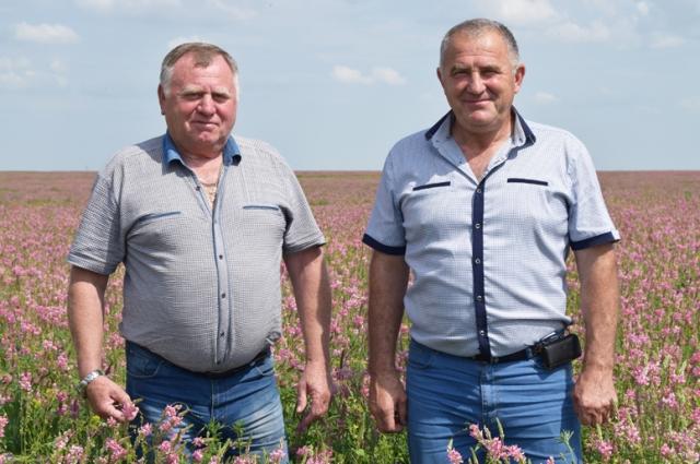 «Смотрите, какая красота уродилась!» - говорит Николай Коробкин (на фото слева).