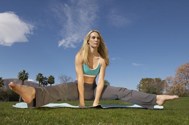 Цель любой йоги - обретение гармонии с собой и с окружающим миром.