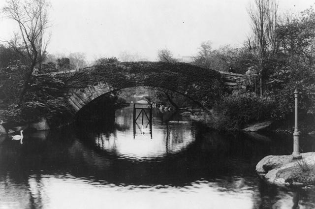 Вид на один из водоёмов Центрального парка начала XX века