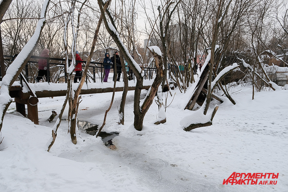 Серебрянский парк в Перми.