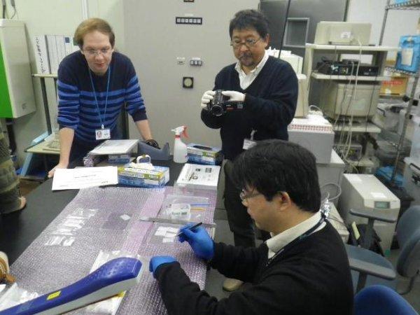 Казанские и японские ученые совместно работают над изучением генома человека.
