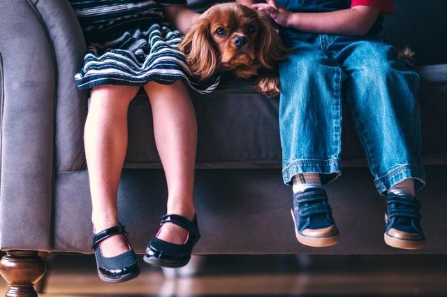 Обувь должна быть сделана из натуральных материалов,удобной, с ортопедической стелькой, которая будет формировать матрицу стопы.