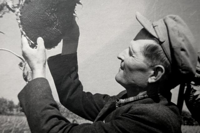 Григорий Жиляев с подсолнечником в руках