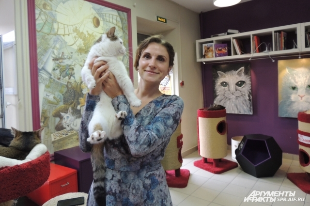 Анна Кондратьева участвовала в спасении эрмитажных котов.