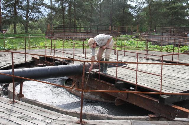 Сегодня бассейны, где должна отстаиваться вода, забиты толстым слоем нечистот.