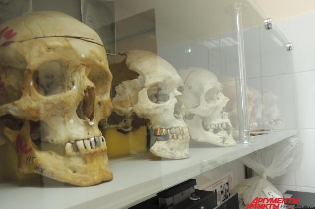 В одном из кабинетов этого помещения расположена необычная лаборатория, при виде которой многим любителям мистики станет не по себе.