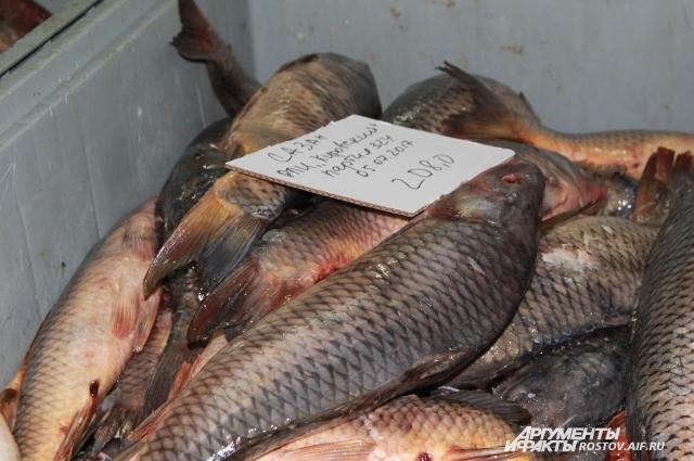 Из донской рыбы российские заводы делают консервы, полуфабрикаты, котлеты.