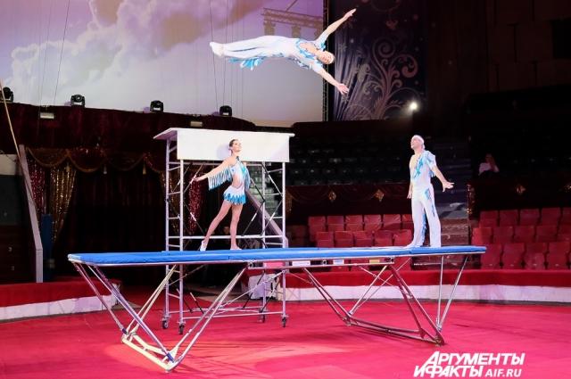Акробаты под руководством Василия Кривенко выполнят на батуте пируэты, кульбиты, сальто и винты.