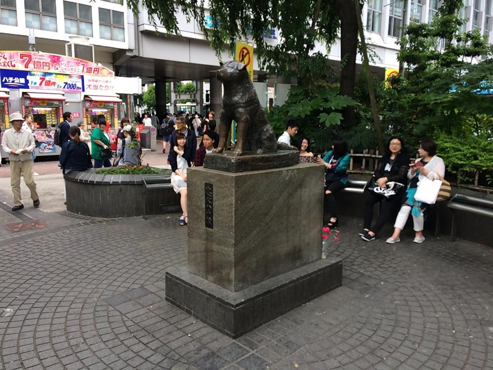 Памятник псу Хатико - популярное место среди туристов и японских влюблённых.