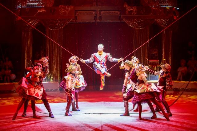 Артисты Российской государственной цирковой компании покажут шоу.