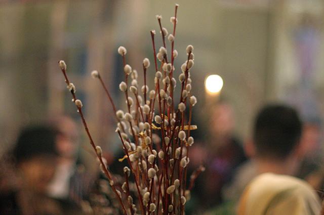 В вербное воскресенье прихожан призывают думать о душе, а не о приметах.