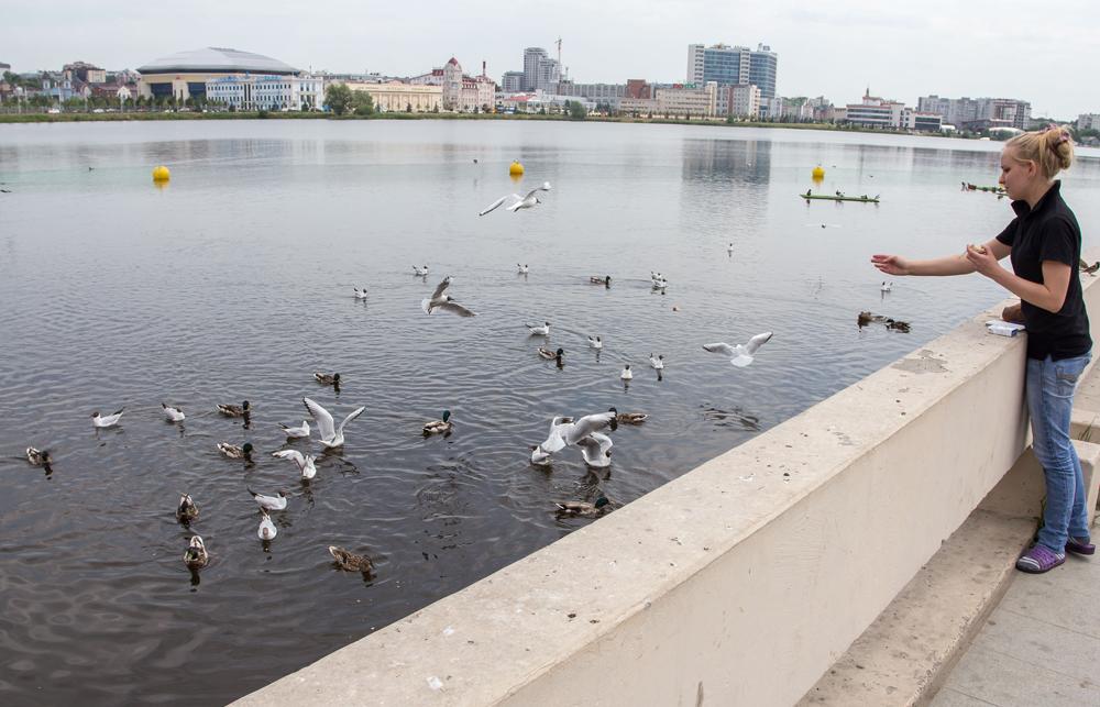 В озеро Кабан до сих пор сливаются промышленные стоки.