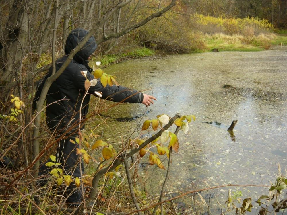 Тело погибшего утопили в водоеме в лесу под Березовским